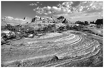 Circular sandstone striations near Elephant Hill, the Needles, late afternoon. Canyonlands National Park, Utah, USA. (black and white)