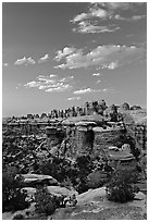 Last light on the Needles. Canyonlands National Park, Utah, USA. (black and white)