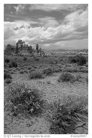 Sandstone towers in sandy flat basin, Chesler Park. Canyonlands National Park (black and white)
