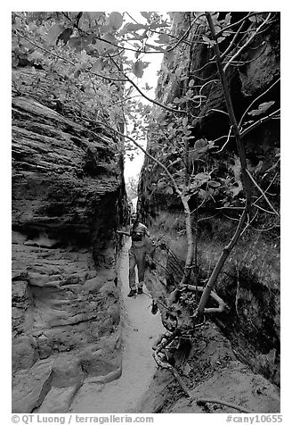 Hiker in narrow passage between rock walls, the Needles. Canyonlands National Park (black and white)