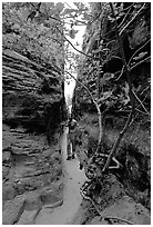 Hiker in narrow passage between rock walls, the Needles. Canyonlands National Park, Utah, USA. (black and white)