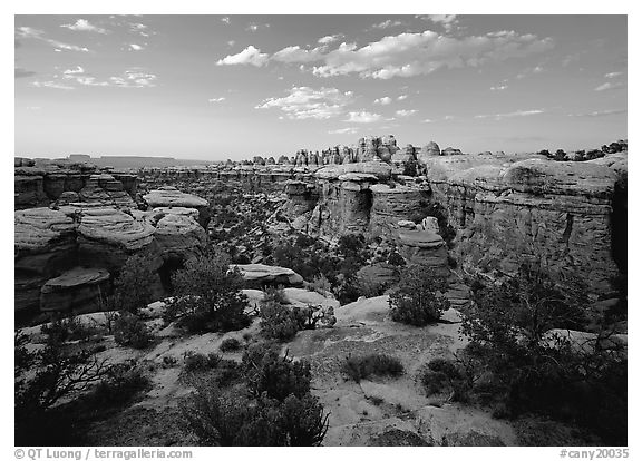 Elephant Canyon at sunset, the Needles. Canyonlands National Park (black and white)