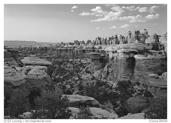 Elephant Valley, sunset. Canyonlands National Park (black and white)