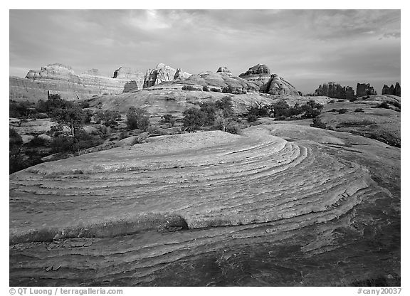 Rock swirls and spires at sunset, Needles District. Canyonlands National Park (black and white)