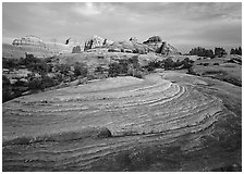 Rock swirls and spires at sunset, Needles District. Canyonlands National Park, Utah, USA. (black and white)