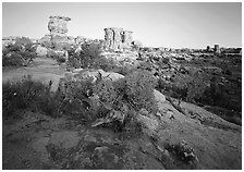 Spires at Big Spring Canyon, Needles District. Canyonlands National Park, Utah, USA. (black and white)