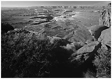 Green river overlook and Henry mountains, Island in the sky. Canyonlands National Park, Utah, USA. (black and white)