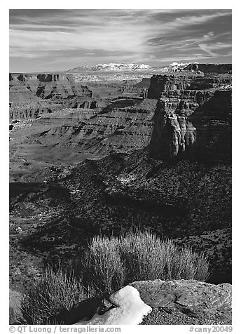 Distant canyons from Green River Overlook, Island in the Sky. Canyonlands National Park (black and white)