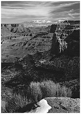 Distant canyons from Green River Overlook, Island in the Sky. Canyonlands National Park ( black and white)