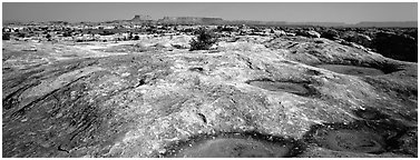 Potholed sandstone slab, Needles District. Canyonlands National Park (Panoramic black and white)