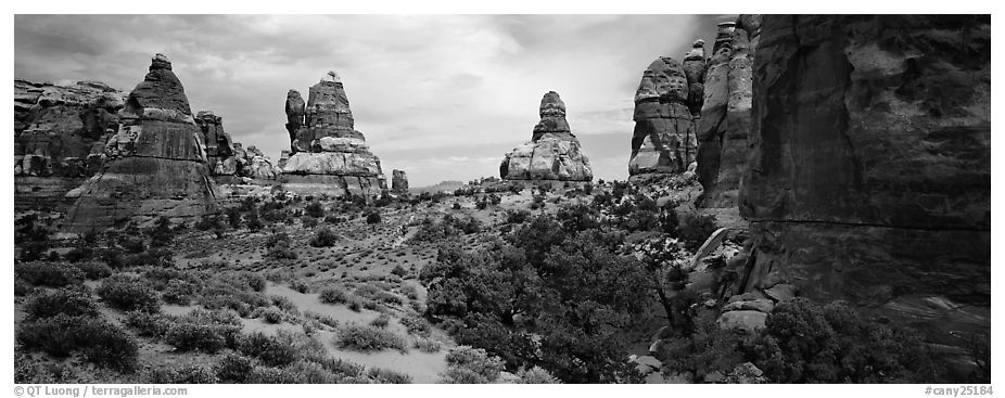 Rock towers, Chessler Park, Needles District. Canyonlands National Park (black and white)