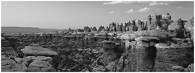 Colorful spires of Cedar Mesa Sandstone, sunset, Needles District. Canyonlands National Park (Panoramic black and white)