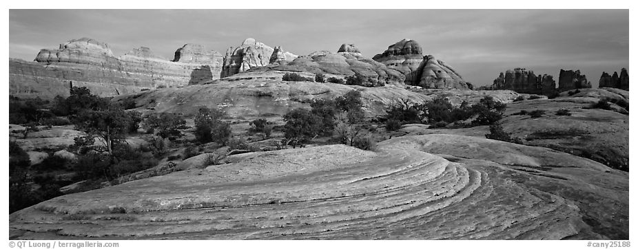 Sandstone Swirls and Rock needles at sunset, Needles District. Canyonlands National Park (black and white)