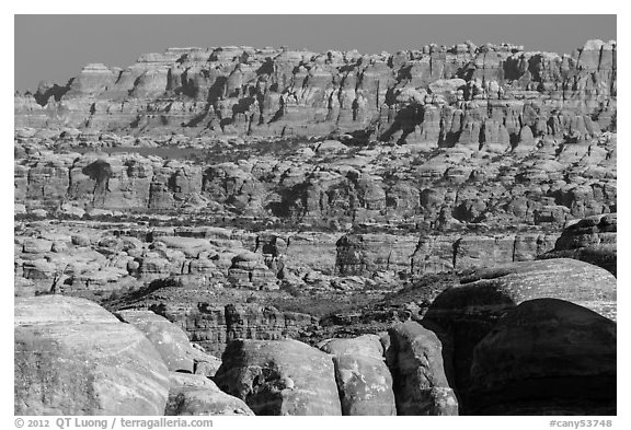 The Needles seen from the Doll House. Canyonlands National Park (black and white)