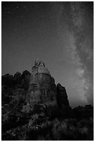 Doll House spires and Milky Way. Canyonlands National Park, Utah, USA. (black and white)