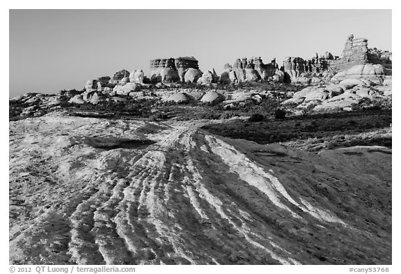 Sandstone swirls and Doll House spires, early morning. Canyonlands National Park (black and white)