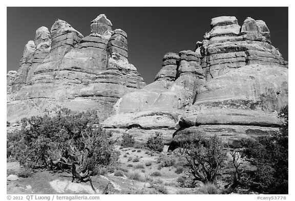 Massive spires, Dollhouse, Maze District. Canyonlands National Park (black and white)