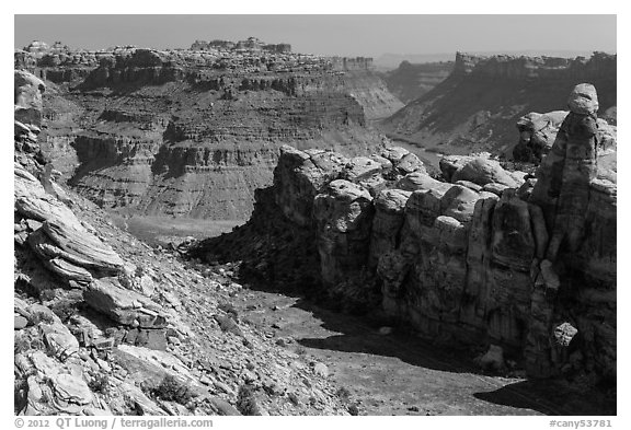 Surprise Valley and Colorado River canyon. Canyonlands National Park (black and white)
