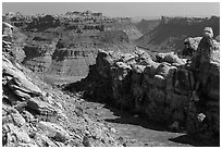 Surprise Valley and Colorado River canyon. Canyonlands National Park, Utah, USA. (black and white)