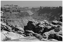Colorado River Canyon seen from Maze District. Canyonlands National Park ( black and white)