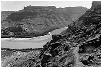 Trail overlooking Colorado River. Canyonlands National Park ( black and white)
