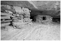 Ancient granary on Aztec Butte. Canyonlands National Park, Utah, USA. (black and white)