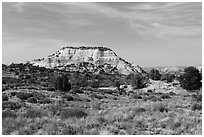 Aztec Butte. Canyonlands National Park, Utah, USA. (black and white)