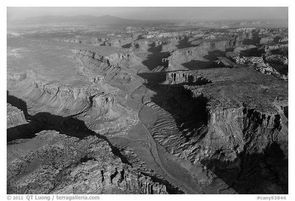 Aerial view of Taylor Canyon. Canyonlands National Park (black and white)