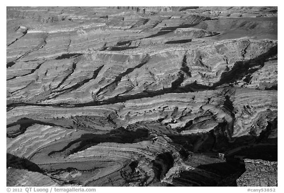 Aerial view of Maze canyons. Canyonlands National Park (black and white)