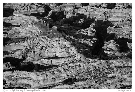 Aerial view of Chocolate Drops. Canyonlands National Park (black and white)