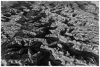 Aerial view of the Maze. Canyonlands National Park, Utah, USA. (black and white)