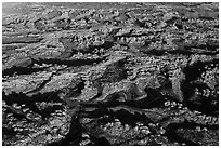 Aerial view of Needles District. Canyonlands National Park, Utah, USA. (black and white)