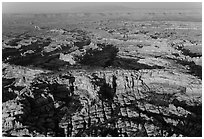 Aerial view of pinnacles and canyons, Needles. Canyonlands National Park, Utah, USA. (black and white)