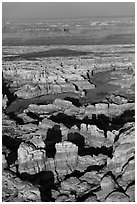 Aerial view of spires and canyons, Needles. Canyonlands National Park, Utah, USA. (black and white)