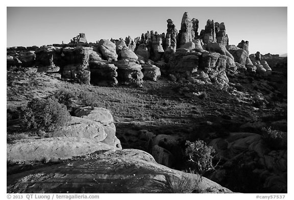 Dollhouse spires at sunrise. Canyonlands National Park (black and white)