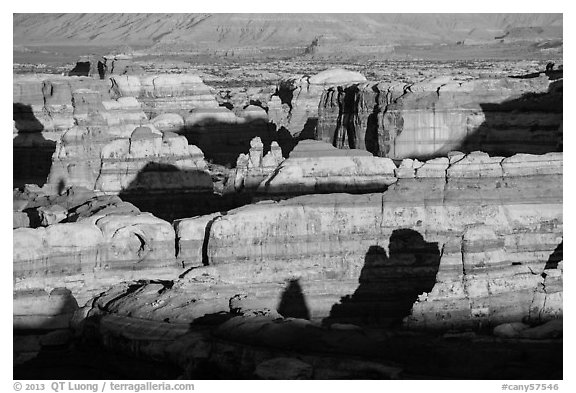 Maze canyons at sunset. Canyonlands National Park (black and white)