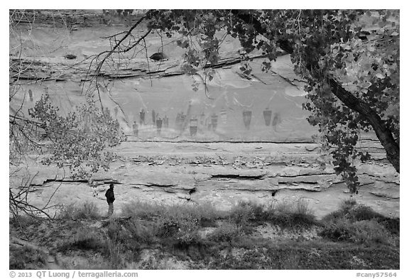 Park visitor looking, the Great Gallery,  Horseshoe Canyon. Canyonlands National Park (black and white)