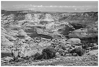 Horseshoe Canyon rim. Canyonlands National Park, Utah, USA. (black and white)