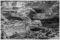 Horseshoe Canyon rims. Canyonlands National Park, Utah, USA. (black and white)