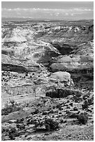 Horseshoe Canyon seen from above. Canyonlands National Park ( black and white)