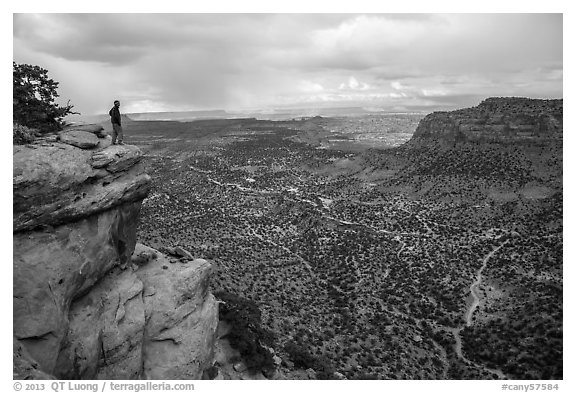Park visitor looking, Wingate Cliffs at Flint Trail overlook. Canyonlands National Park (black and white)