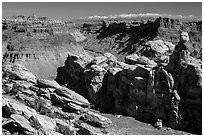 Surprise Valley, Colorado River, and snowy mountains. Canyonlands National Park, Utah, USA. (black and white)