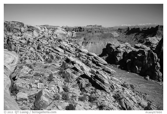 Park visitor looking, Surprise Valley overlook. Canyonlands National Park (black and white)