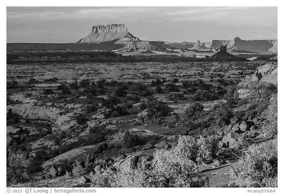 Maze and Elaterite Butte at sunset. Canyonlands National Park (black and white)
