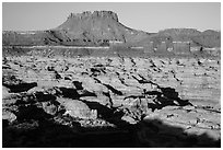 Chocolate drops, Maze canyons, and Elaterite Butte, early morning. Canyonlands National Park, Utah, USA. (black and white)