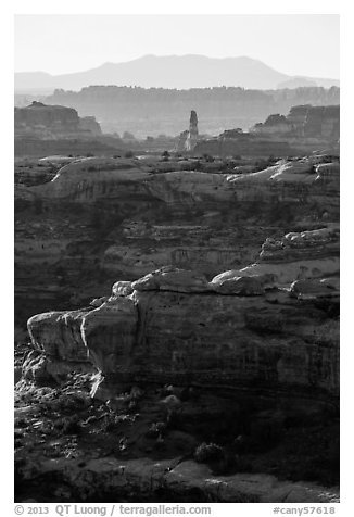 Ridges in Jasper Canyon, Maze District. Canyonlands National Park (black and white)