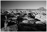 Park visitor looking, Maze canyons. Canyonlands National Park, Utah, USA. (black and white)