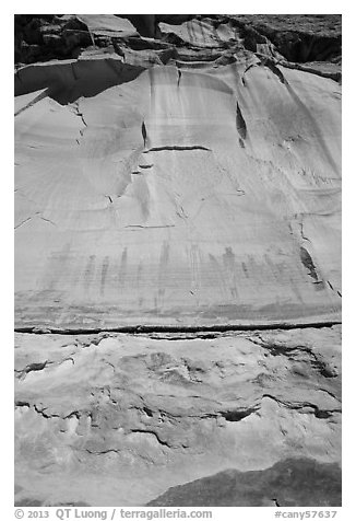 Looking up canyon wall with Harvest Scene pictographs. Canyonlands National Park (black and white)