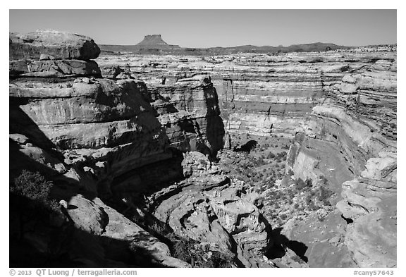 Curved Cedar Mesa sandstone canyons from the rim, Maze District. Canyonlands National Park (black and white)