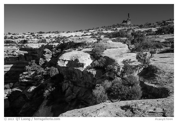 Chimney rock above Maze canyons. Canyonlands National Park (black and white)